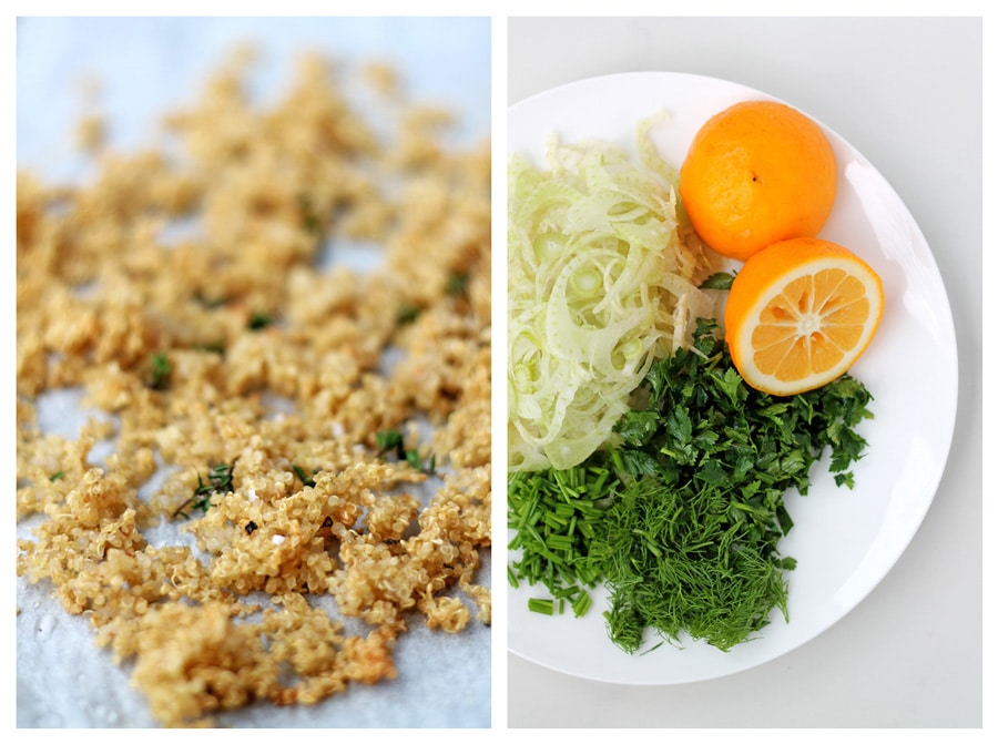 ... Crusted Chicken with Fennel Slaw (mmmm sounds yum) goes when we apply